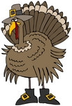 Clipart Illustration of a Silly Thanksgiving Turkey Bird In Pilgrim Boots And A Hat, Hiding From Hunters